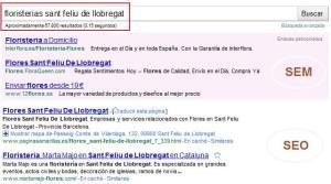 Posicionamient Google SEO-SEM